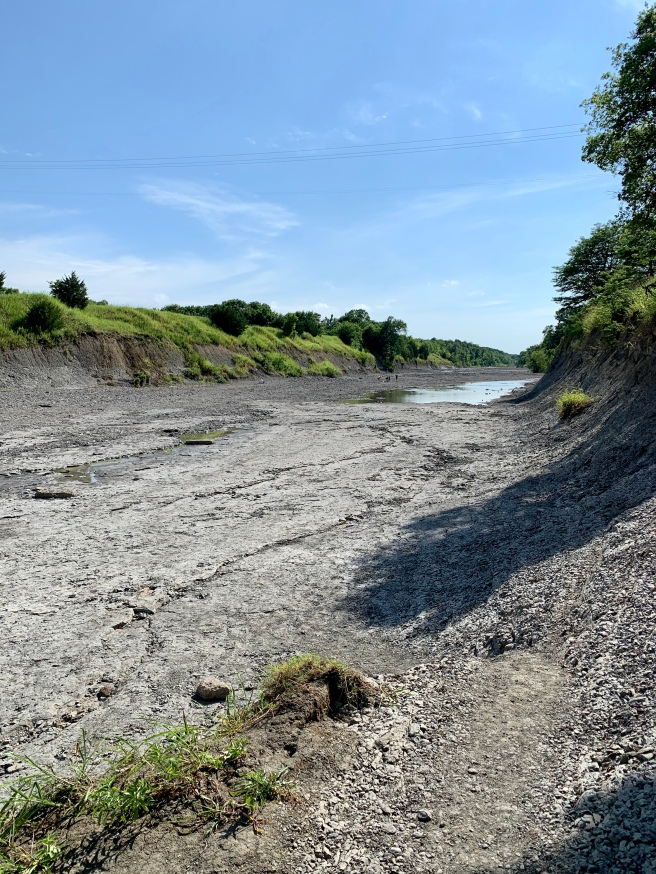 Partially dry riverbed of the North Sulphur River