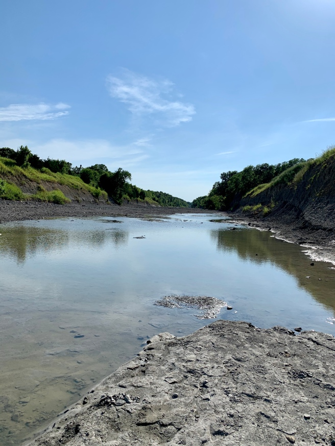The North Sulphur River